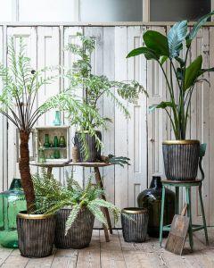 Planter set/3 EW-5290