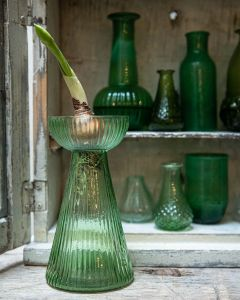 Hyacinth vase green L WEL028